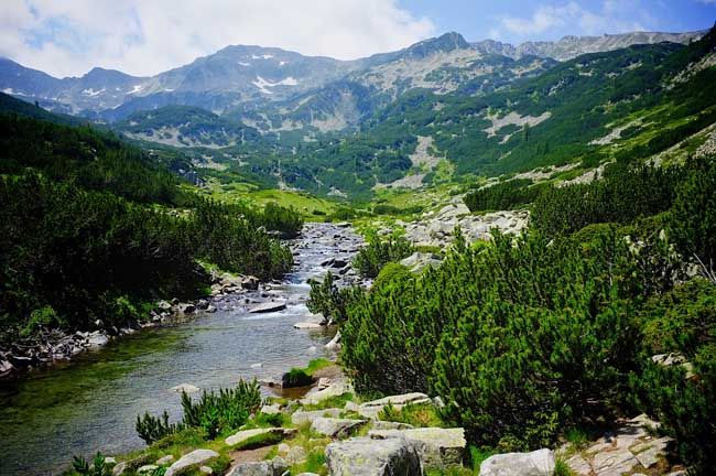 A Bulgarian Escape Day 9 - For the Love of National Parks